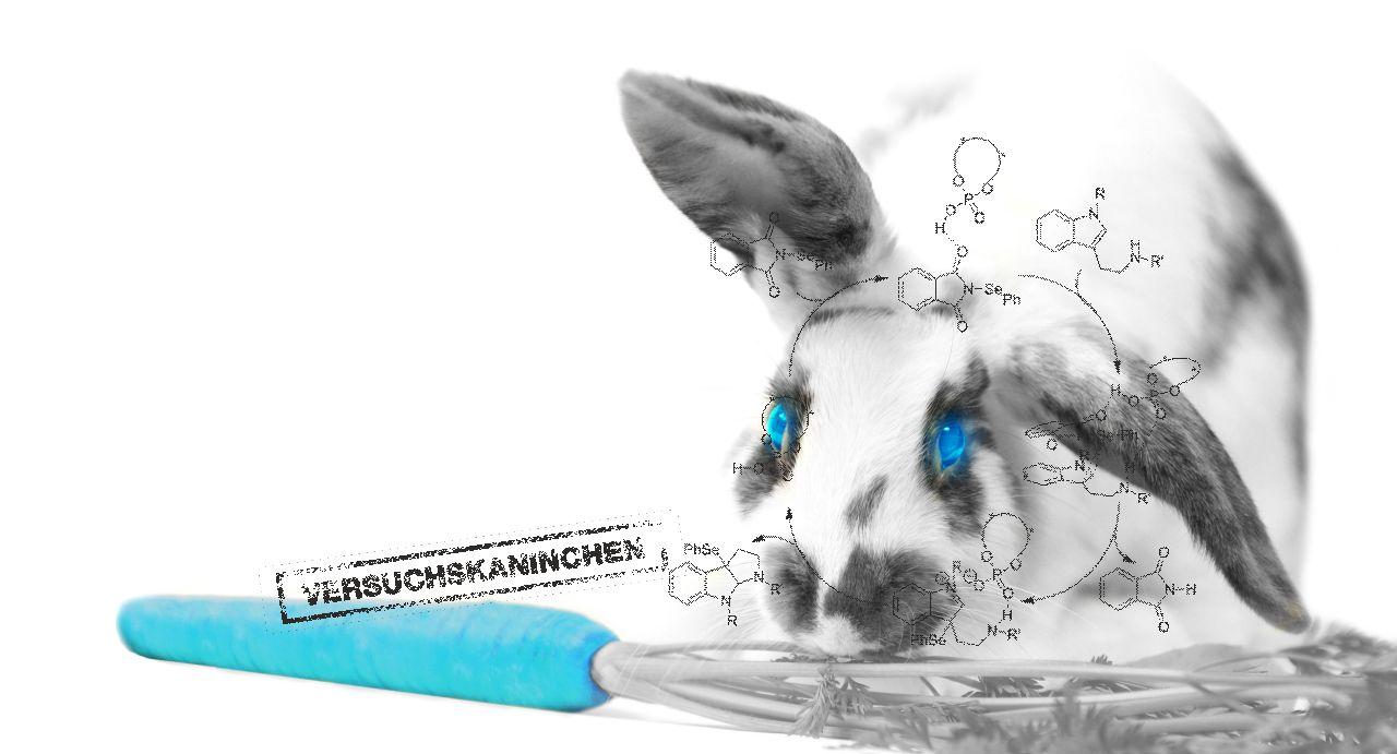 Titelgrafik der NPS Broschüre für neue psychoaktive Substanzen mit rc-designer drogen hase versuchskaninchen