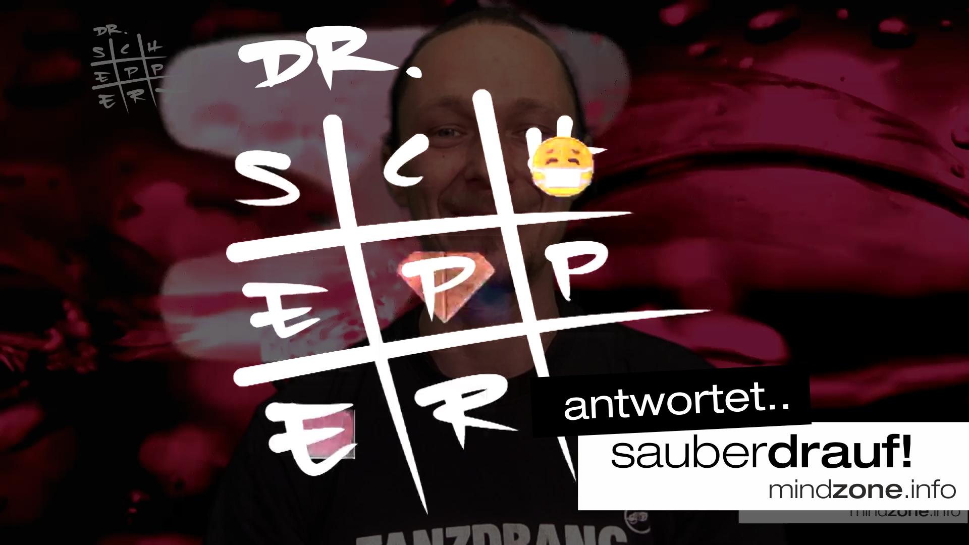 DR SCHEPPERT Folge 1